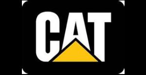 cat-induprod